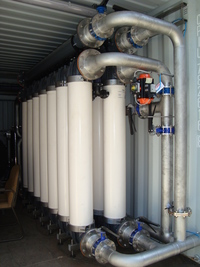 Containerised Water Plants - Ready for application