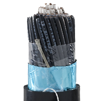 Instrumentation cables are multiple conductor cables that convey low energy electrical signals used for monitoring or controlling electrical power systems and their associated processes.