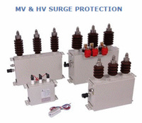 The PROTEC Z family is a range of surge suppressors for protection of medium voltage motors, generators and transformers against transient switching surges