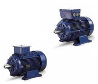 We supply a wide range of AC & DC Electric Motors, contact us for more information on our wide range of Electric motors.