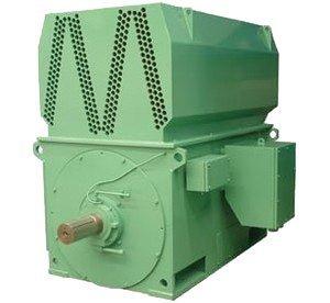Medium Voltage Motors